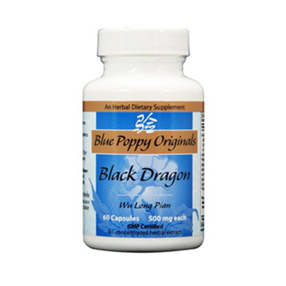 Picture of Black Dragon by Blue Poppy
