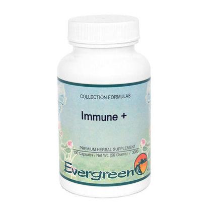 Picture of Immune + Evergreen Caps 100ct